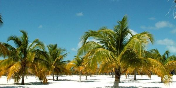 Туры на Кубу в августе