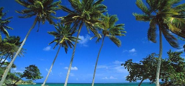 Туры в Доминикану весной