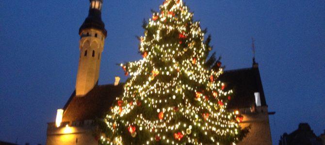 Тур Таллинн — Раквере через века в Средневековье на 2 дня